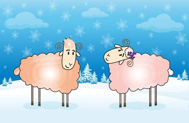 Winter sheep card