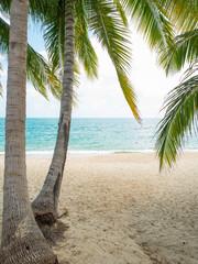 Tropical beach of Koh Samui island