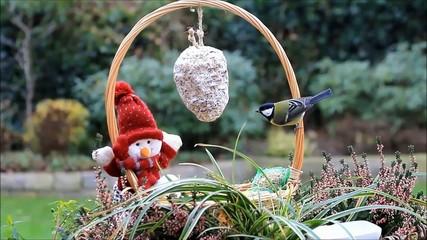 Korb mit Puppe und Winterfutter für Vögel