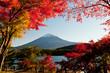 Mt Fuji - 74657979