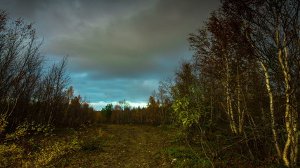 Storm clouds over the autumn forest