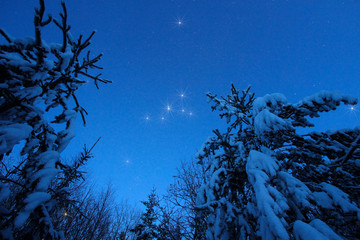 Beautiful night winter landscape with the stars
