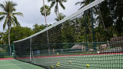 Tennis Balls in Court Net with Palm Trees Background