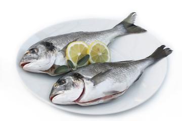 due orate su piatto con limone_ sfondo bianco