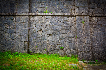 Ancient stone wall, grass in the foreground. texture stone