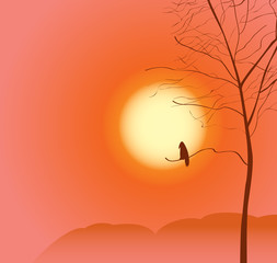 landscape with tree and a raven on sunset sky background