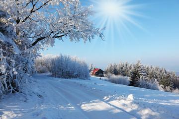 Rolled ski track on sunny December day