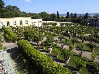 Villa Medicea di Castello,Sesto Fiorentino,Firenze