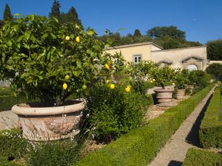 Villa Medicea of Castello,florence,Tuscany,Italy