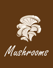 Bunch of oyster mushrooms
