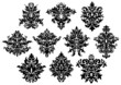 Abstract black floral design elements set