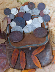 purse with the last centuries