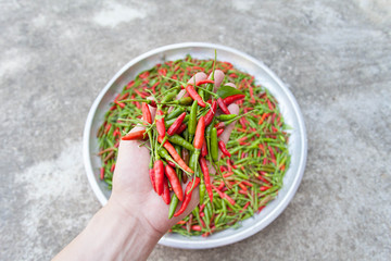 Red & green chillies on the aluminum tray