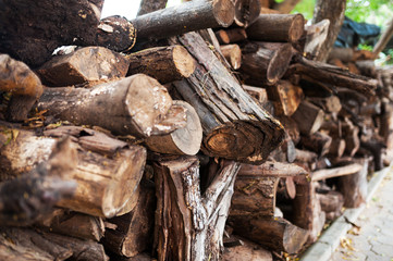 Woodpile in Shed