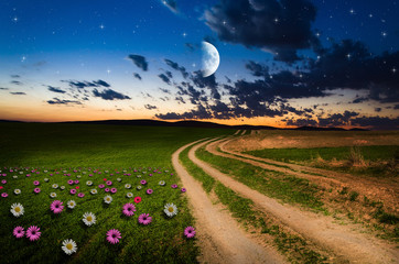 Dirt road in the night.