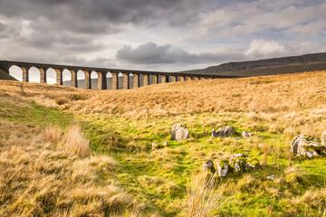Ribblehead Railway Bridge