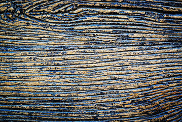 Old wood background drop shadow soft ligh .