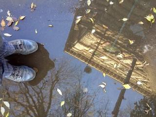 palazzo riflesso nell'acqua di una pozzanghera