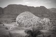Cuba black white - Vinales Valley National Park