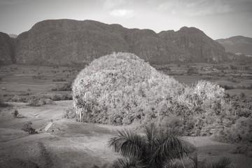 Cuba black white - Vinales Valley National Park