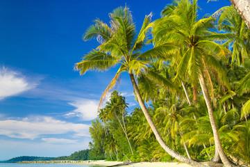 Beautiful Beach Serenity Shore