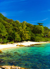 Divine Shoreline In Paradise Found
