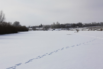 winter fishing on the lake covered with ice