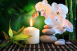 spa composition: white orchid, candle and stones in green