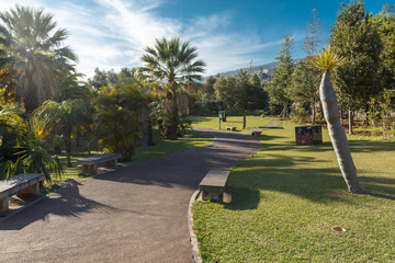 Park. Funchal, Madeira island, Portugal