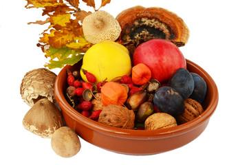 Decoration of autumn fruits