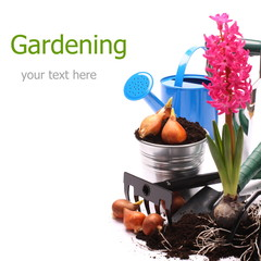 Gardening tools and hyacinth isolated on white