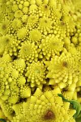 Romanesco broccoli, close up