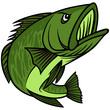 Bass Mascot - 74698183