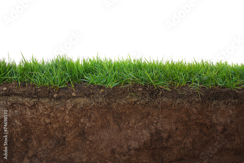 Staande foto Platteland Grass and soil