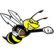 Obrazy na płótnie, fototapety, zdjęcia, fotoobrazy drukowane : Bee Football Mascot