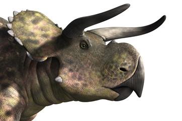 Nasutoceratops Portrait