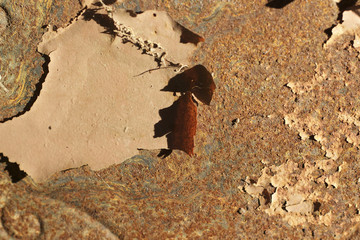 Brown chipped paint on rusty metal surface background