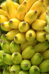 Bunch of bananas,background