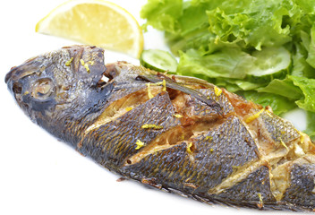 Roasted fish with salad and spice
