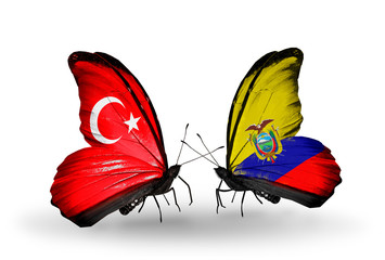 Two butterflies with flags Turkey and Ecuador
