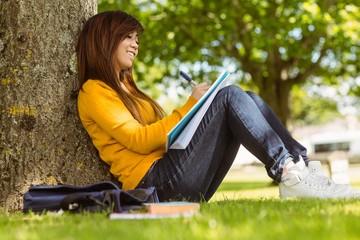 Female student doing homework against tree in park