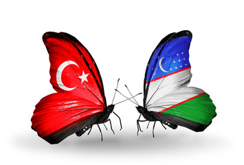Two butterflies with flags Turkey and Uzbekistan