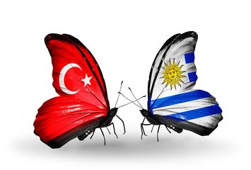 Two butterflies with flags Turkey and Uruguay