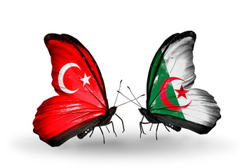 Two butterflies with flags Turkey and Algeria