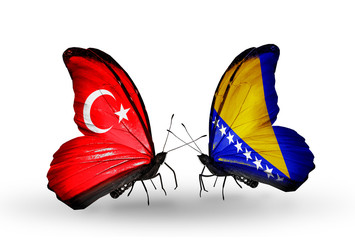 Two butterflies with flags Turkey and Bosnia and Herzegovina