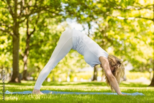 Fit blonde doing yoga in the park - 74713727
