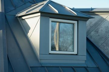 Modern classical design new vertical roof window