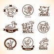 Farm Labels Set