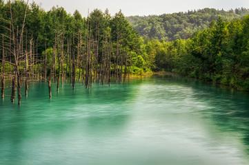 Blue Pond in national park taken during summer.