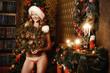 payful santa
